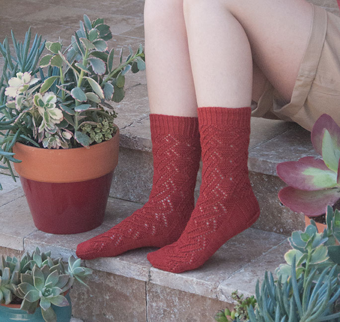 Grand Canyon Socks by Sara Elizabeth Schmidt